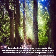 SnapshotBlog 008: How to Maintain Sanity in the TechnologicalAge